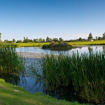 Roganstown Golf Courses
