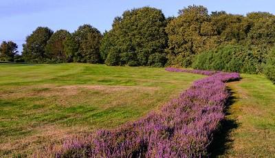 Tadmarton Heath Golf Club